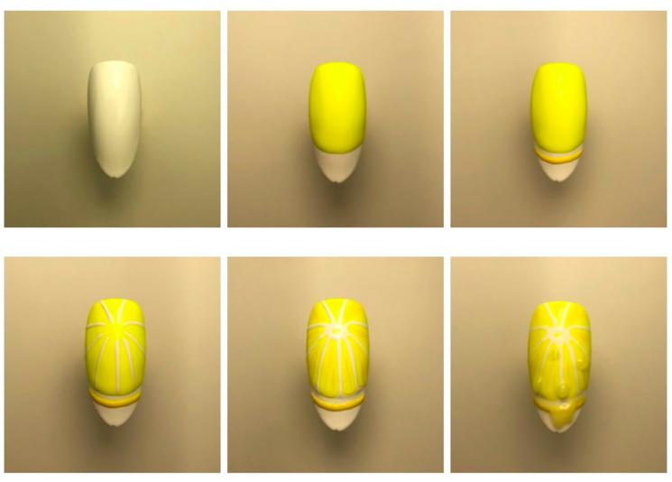 step by step tutorial nagel citroenschijfje